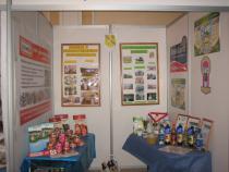 Выставка 5